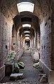 Anfiteatro Campano sotterranei.jpg