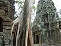 Angkor - Ta Prohm - 004 Door and Tower (8580827115).jpg