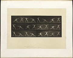 Animal locomotion. Plate 349 (Boston Public Library).jpg