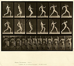 Animal locomotion. Plate 7 (Boston Public Library).jpg