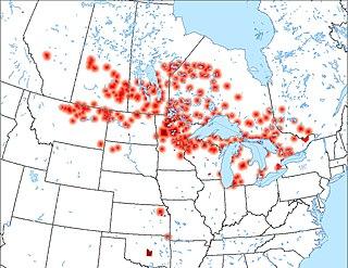 Ojibwe language language