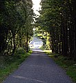 Approach to A980 - geograph.org.uk - 980388.jpg