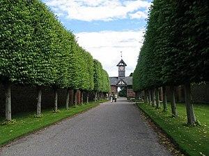 Pleaching - Image: Arley Hall Lime Walk geograph.org.uk 530409