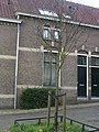 Arnhem-sophiastraat-boompje.jpg