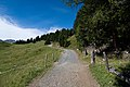 Arosa - trail 7.jpg
