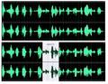 Arxiu audio.PNG