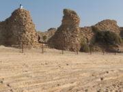 Ashdod Mezuda Gate