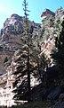 Ashdown Gorge, DyeClan.com - panoramio (11).jpg