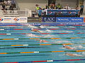 Aust Swimming Champs (5929915895).jpg