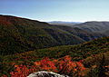 Autumn-colors-changing-wv-mountains - Virginia - ForestWander.jpg