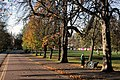 Autumn Afternoon in Greenwich Park - geograph.org.uk - 2172237.jpg