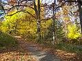 Autumn Colors. (61310768).jpg