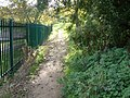 Autumn Footpath - geograph.org.uk - 888893.jpg