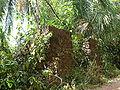 Bagne royale ruins.jpg