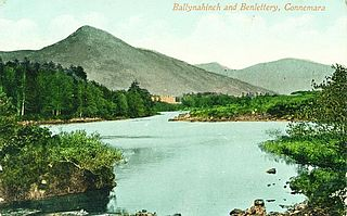 Ballynahinch, County Galway Town in Ireland