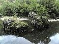 Banat,Nera Canyon - panoramio (50).jpg