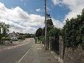 Bangor, UK - panoramio (179).jpg