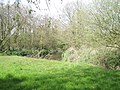 Bank of the River Rother - geograph.org.uk - 779307.jpg