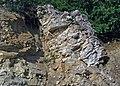 Baraboo Quartzite (upper Paleoproterozoic, ~1.7 Ga; Rt. 12 roadcut, South Range, Baraboo Ranges, Wisconsin, USA) 6 (18622103899).jpg