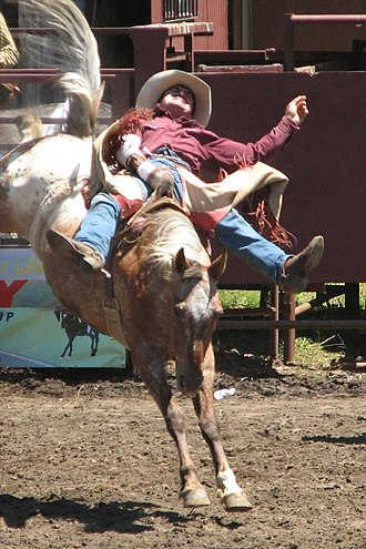 Bareback riding - Bareback bronc riding