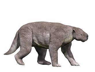 Pantodonta - Image: Barylambda NT small