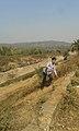 Beauty of Mukutmanipur.jpg