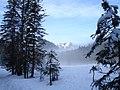 Bei der Schwarzentennalm - panoramio.jpg