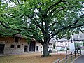 Beim Bürgerhaus Felldorf - panoramio.jpg