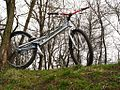 Bicicleta-trial26inch.jpg