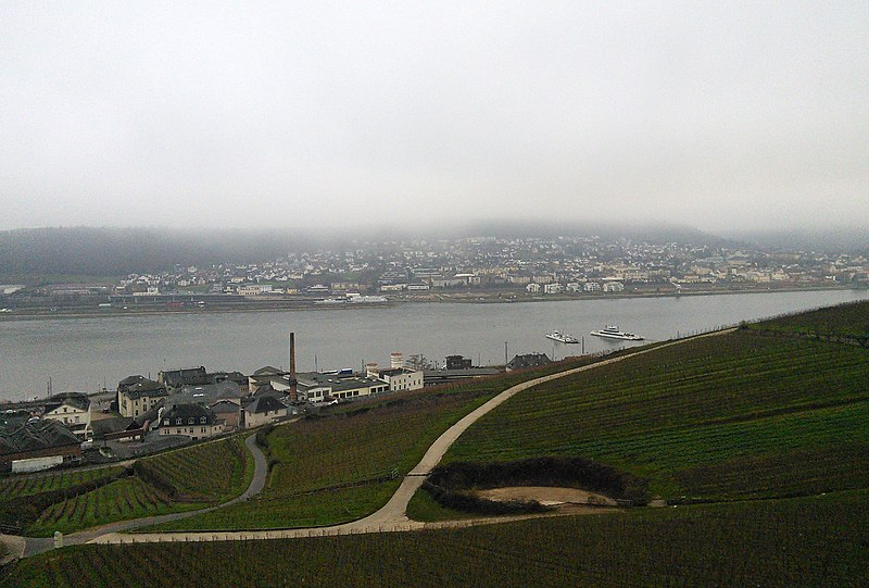 File:Bingen (right) and the former Uralt-factory in Rüdesheim am Rhein (left), seen from the Niederwald cable car. Hesse, Germany. - panoramio.jpg