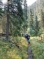 Black Hills National Forest - Social 1.jpg