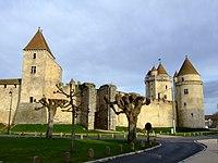 Blandy-les-Tours castle.jpg