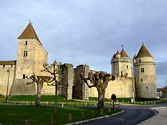Blandy-les-Tours castle.jpg