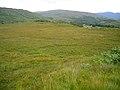 Bog Near Loch Arienas - geograph.org.uk - 512834.jpg