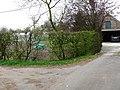 Bornem Brandheide 38 Beukenhaag hoogstamboomgaard (3) - 193470 - onroerenderfgoed.jpg