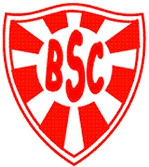 Botafogo Sport Club - Image: Botafogo salvador 2