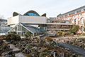 Botanischer Garten der Universität Basel 2014.jpg