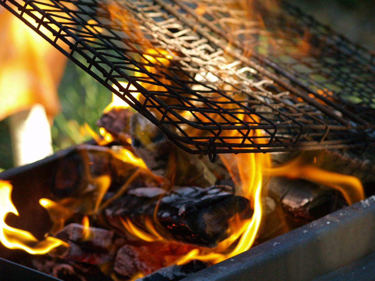 Image result for national braai day