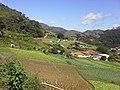 Brasil rural - panoramio (25).jpg