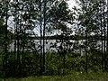 Braslaw District, Belarus - panoramio - alinco fan (12).jpg