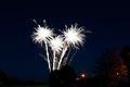 Bray Fireworks (6848271854).jpg