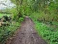 Bridleway through The Birches - geograph.org.uk - 784888.jpg