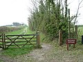 Bridleway to Swanway Cottage - geograph.org.uk - 156450.jpg