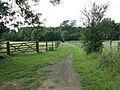 Bridleway to woods at Stakers Gill - geograph.org.uk - 1419057.jpg