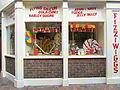 Brighton 2010 PD 115.JPG