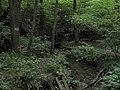 Bubovice-Srbsko - panoramio (67).jpg