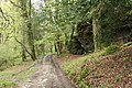Buckland Monachorum, track near Double Waters - geograph.org.uk - 1279251.jpg