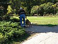 Bucuresti, Romania, Parcul Herastrau (Imagine din parc, 15); B-II-a-A-18802.JPG