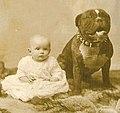 Bulldog with baby 1892.jpg