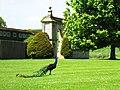 Bulwick NN17, UK - panoramio (7).jpg